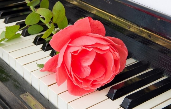 Funeral Directors in Melbourne: Choosing Fitting Music for a Funeral